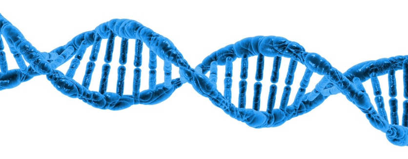 Tuesday Tip of the Week #9 – Know Your Brand DNA